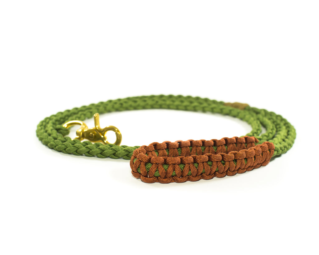 Braided Paracord 550 Leash - Fern