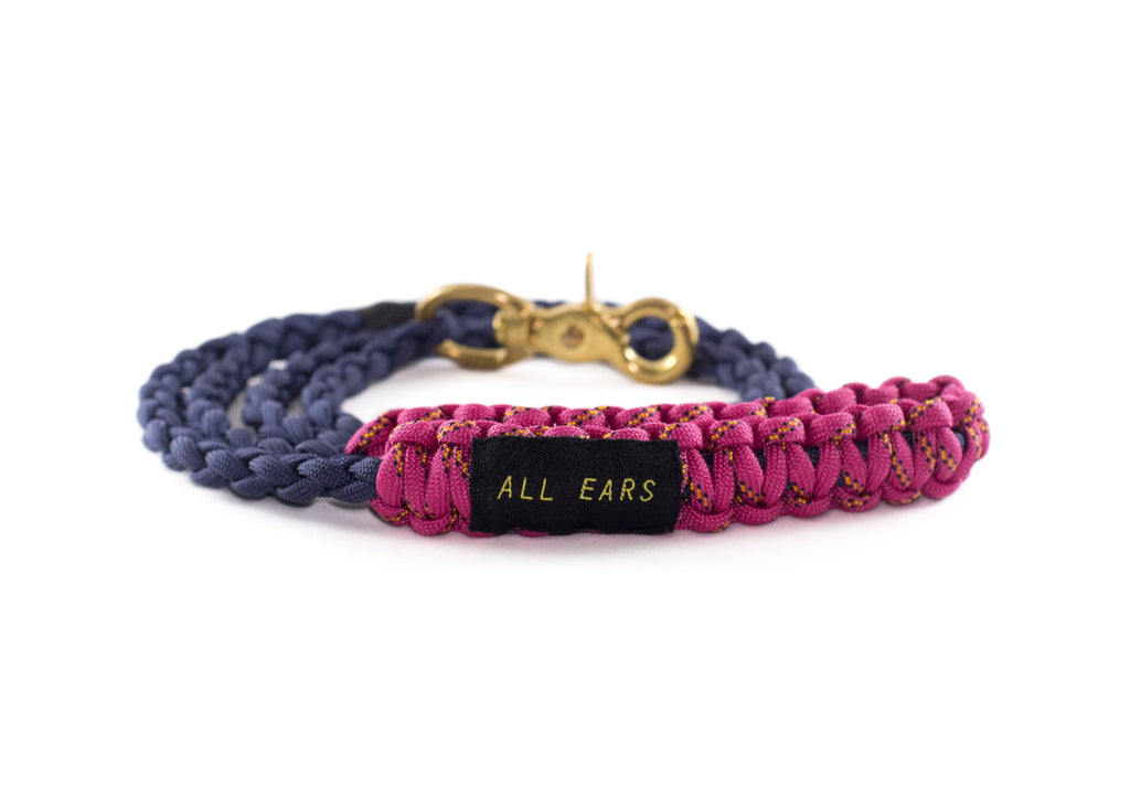 Braided Paracord 550 Leash - Navy