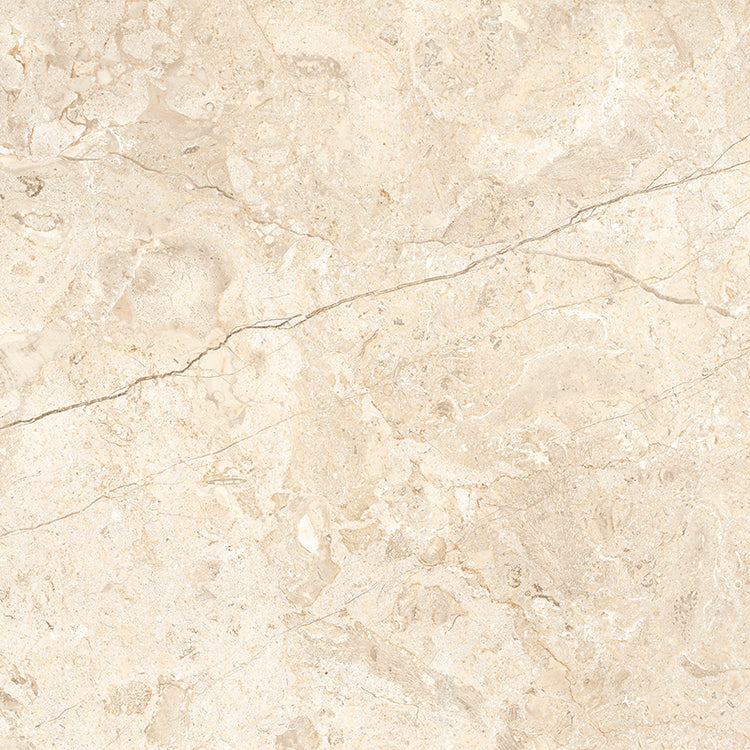 World Flysch Beige
