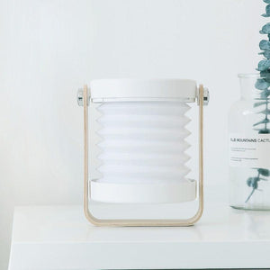 Portable, foldable, dimmable LED Lantern