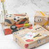 Wrapaholic-Play-Ball-Kraft-Wrapping-Paper-3