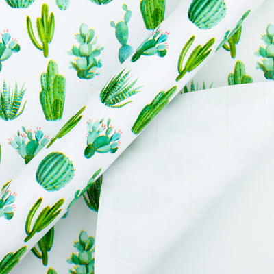 Wrapaholic-Watercolor-Cactus-Print-Gift-Wrapping-Paper-Roll-3