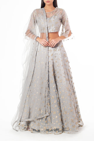 Shimmery Grey Lengha with All Over Sequin Work