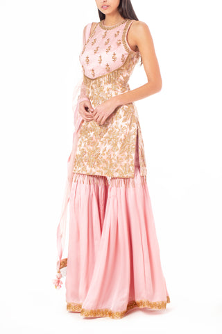 Pink Silk Sharara with Bead and Dabka Embellishment with Lace and Tassels