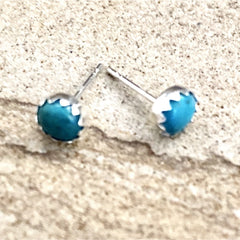 Turquoise Stud Earrings #262