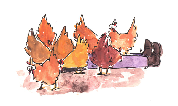 Chickens gather around a person who is laying on the ground. All you can see of the person is their legs and feet.