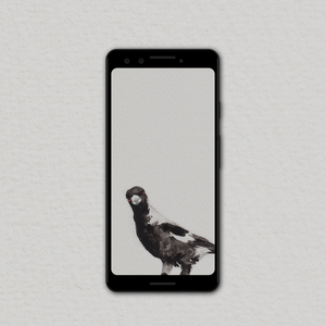 Magpie Wallpapers