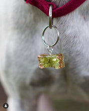 Load image into Gallery viewer, Orgonite Pet Tags