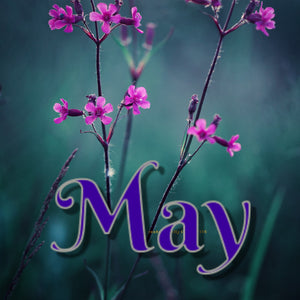 May - Dyed To Order