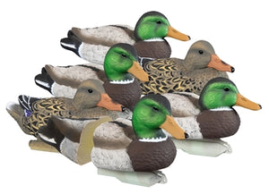Standard Mallard- Foam Filled (6pk)