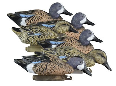 Standard Blue  Wing Teal- Foam Filled (6pk)