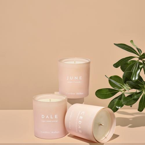 CEDAR Cedarwood + Ylang Ylang Candle - The Lake