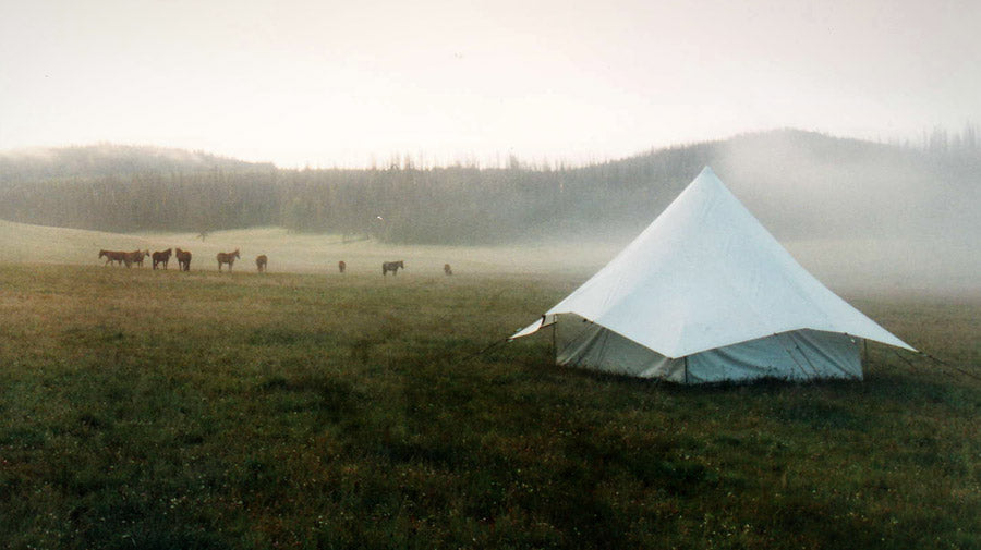 Montana Canvas tents in action