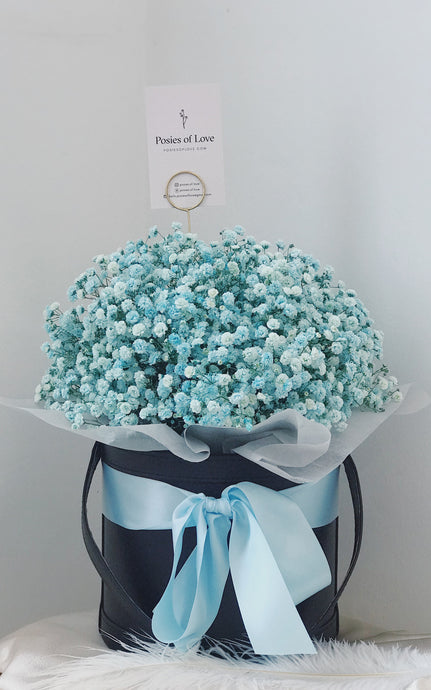 Baby's Breath Bloom Bucket (Blue-Black)