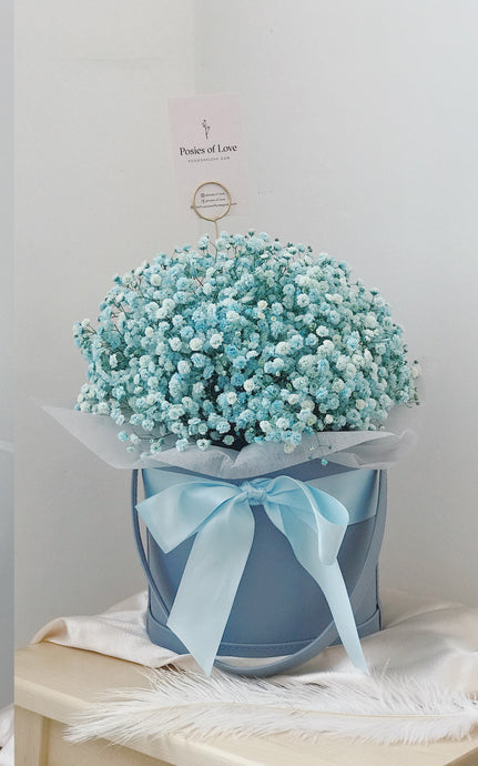 Baby's Breath Bloom Bucket (Blue)