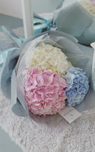 Load image into Gallery viewer, Dreamy Hydrangea Trio