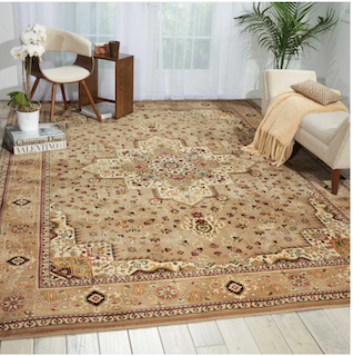 A traditional, beige rug with a center medallion  is displayed in a living room.