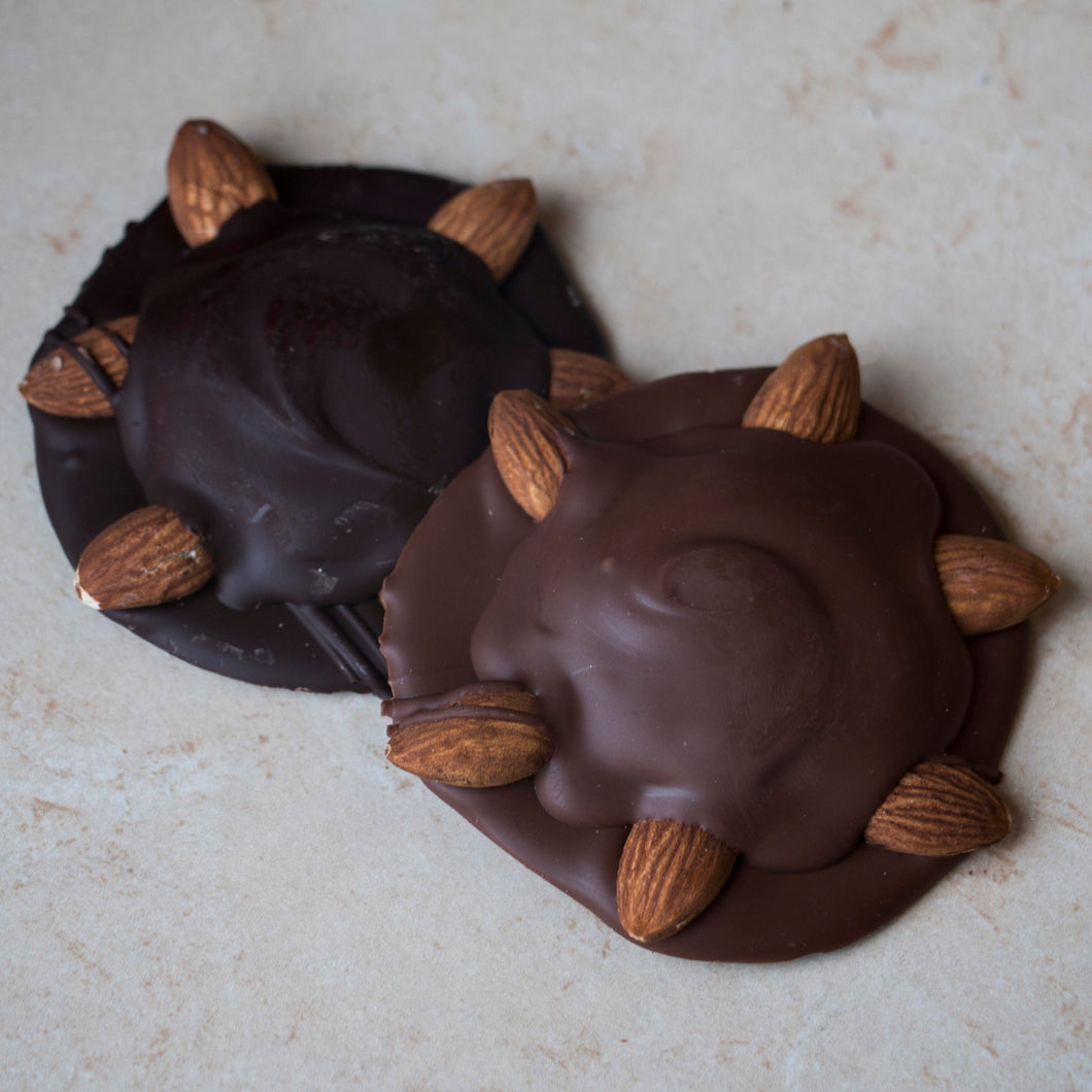 Milk Chocolate Bear Paws - 3 Pack
