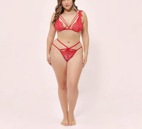 Plus Size Transparent Ultrathin Brassiere Embroidery Lingerie Set