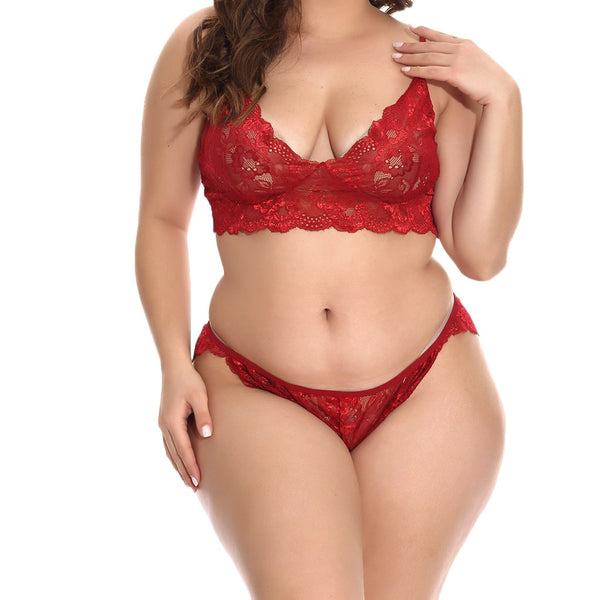 Plus Size 4XL Underwear Lace Underpants Lingerie