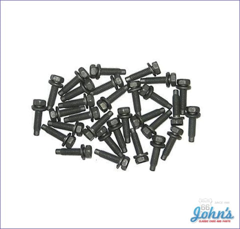 Door Hinge Bolt Kit For All 4 Hinges - 30Pc X F2 A F1