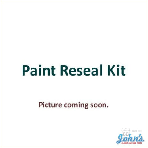 Paint Reseal Kit A