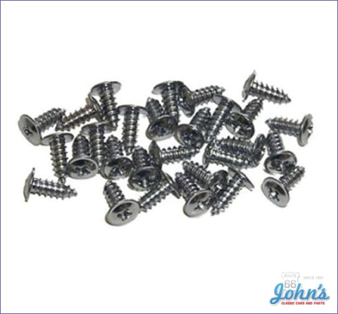 Wheel Well Molding Screw Kit 28Pc. F1 A
