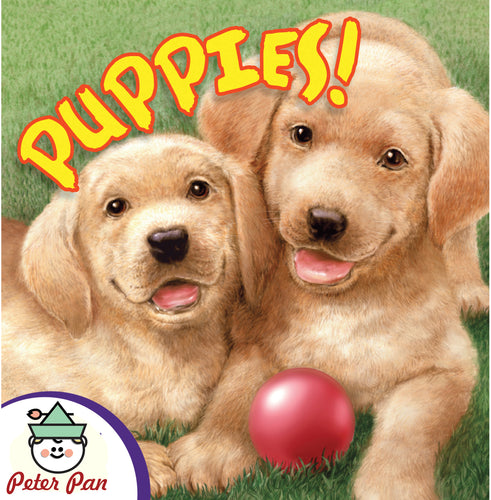 Know It All—Puppies