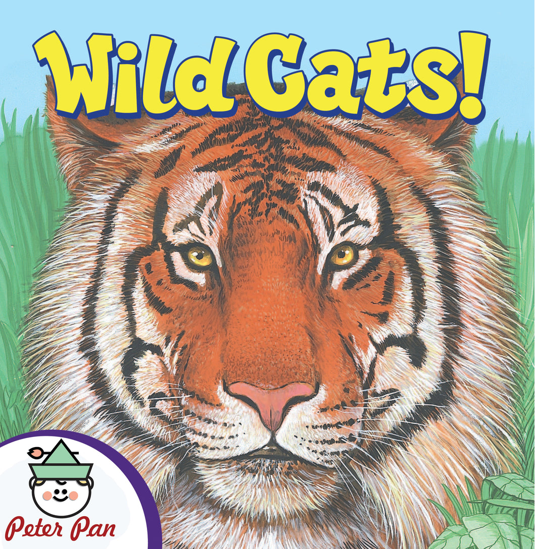 Know It All—Wild Cats