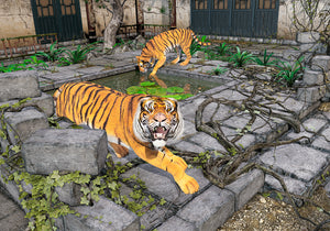 """Tigers in the Courtyard"" - 2013"