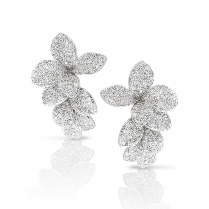 Stelle in Fiore Earrings