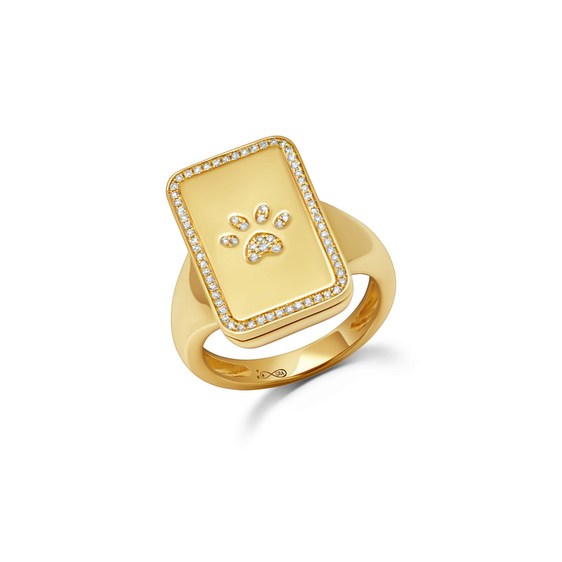 Dog Paw Pill Box Ring
