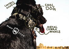 Load image into Gallery viewer, tactical black echo company honey badger dog collar durable