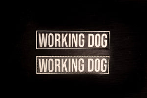 Working Dog glow in the dark Patch