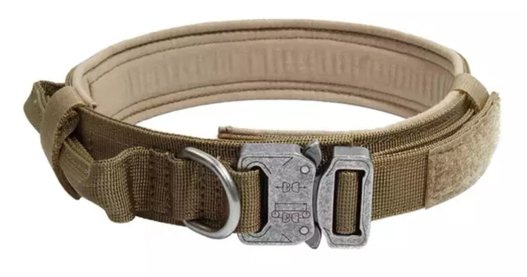 BEC Honey Badger Dog Collar