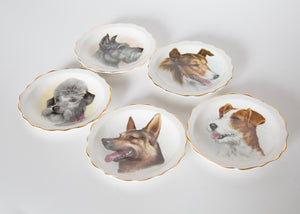Vintage Bone China Trinket Set of 5 Dogs