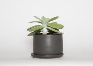 Soul Matter Black Planter with Dish