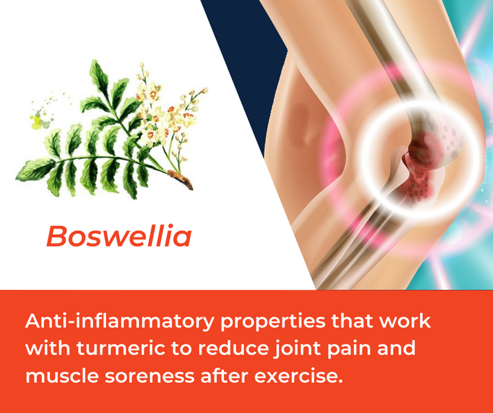 How Boswellia is Used in Mountain Ice Sports Recovery Gel