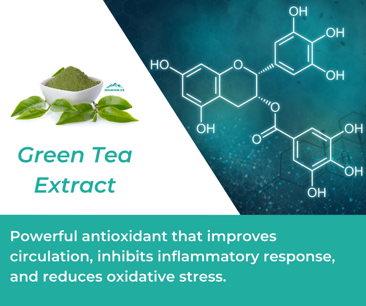 How Green Tea Extract is Used in Mountain Ice Joint and Bone Health Complex