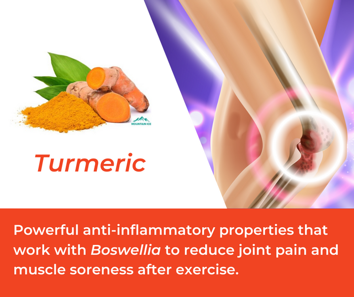 How Turmeric is Used in Mountain Ice Muscle Therapy Gel