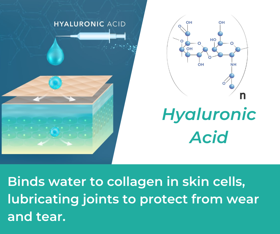 Hyaluronic Acid in Mountain Ice Joint & Bone Health Complex
