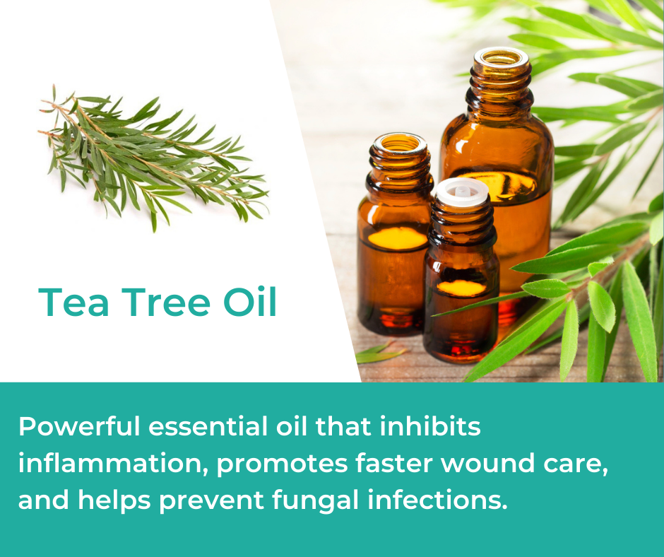 Tea Tree Oil in Mountain Ice Pain Relief Gel