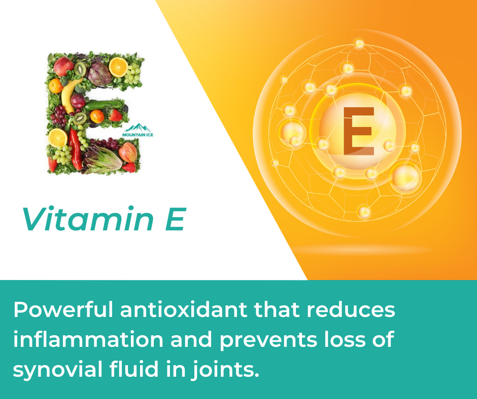 Vitamin E in Mountain Ice