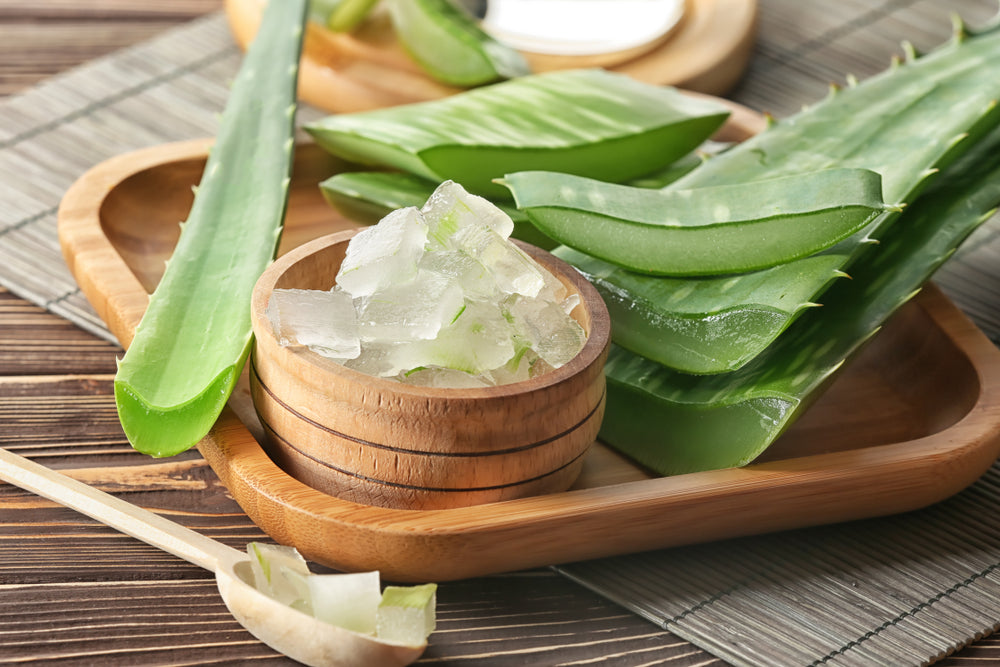 Aloe Vera in Mountain Ice Pain Relief Gel