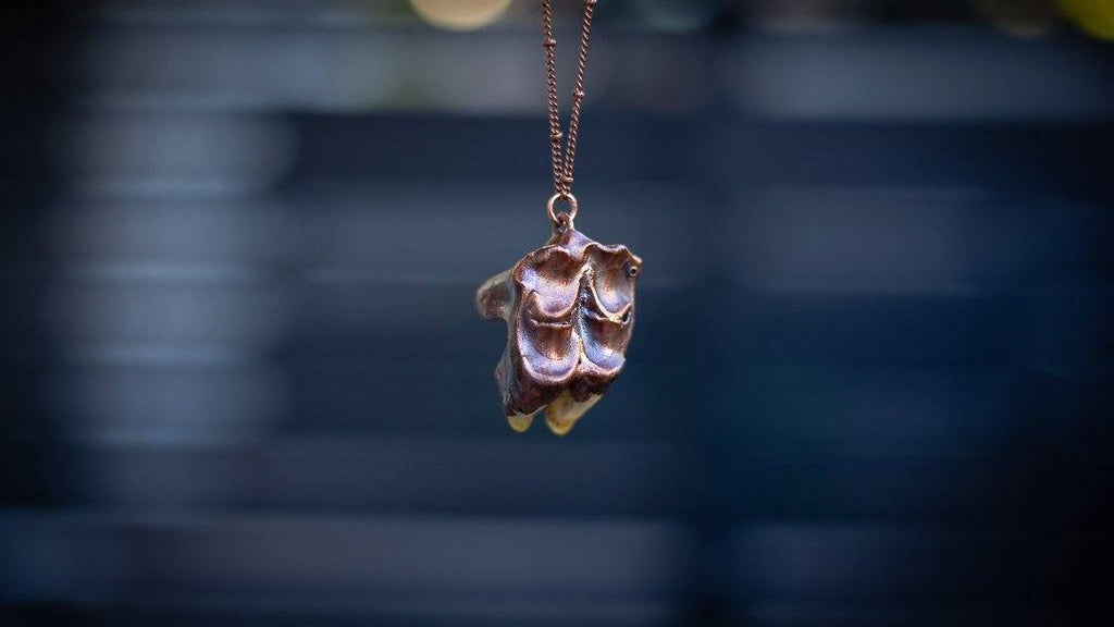 Found Bovine Cow Tooth Half Electroformed Copper Necklace (Piece #1) - Copper Bug Jewelry Organics Copper Bug Jewelry