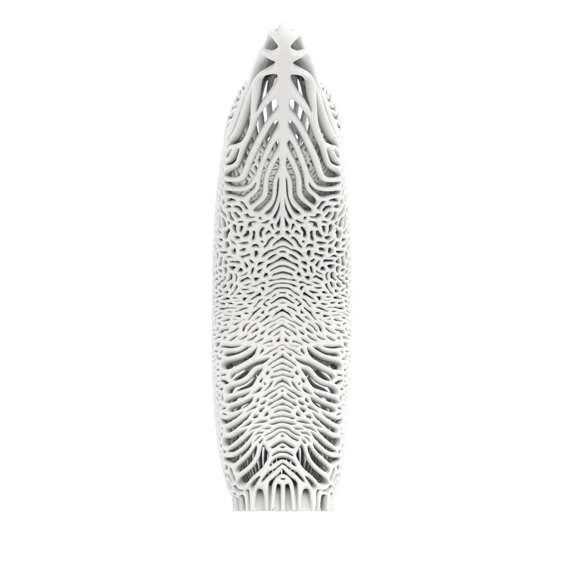 Men's Mycelium 3D File