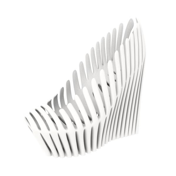 Women's Spine 3D File