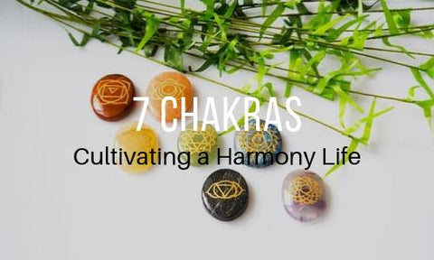 7 Chakras Collection