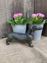 Load image into Gallery viewer, Dachshund Dog - Abigailshome