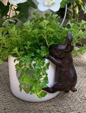 Load image into Gallery viewer, Hare Plant Pot Decoration - Abigailshome